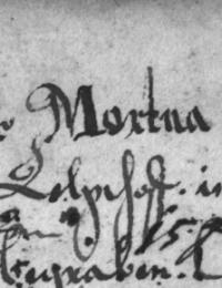 Dorothea Forberger-Mortua-1674.png